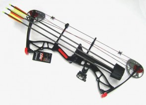Arco Professionale Assassin 20-70 Lbs